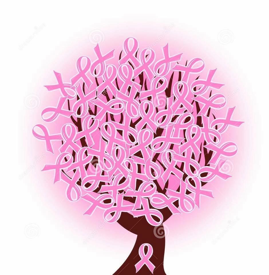 OCTUBRE ROSA SEGERF – La Ginecología Estética Regenerativa Funcional  mejora la calidad de vida de las mujeres con cáncer de mama.